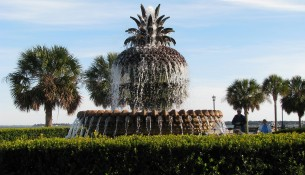 pineapple_fountain