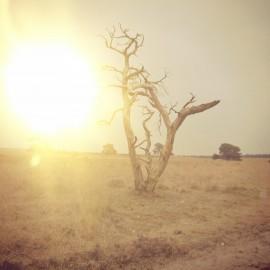 Sun - desert PicsArt_1365015595451