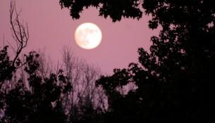 moon file0001364048351