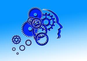 thinking - head pixabay