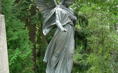 ATG Quirkies: Synchronicity & Serendipity or Just the Library Angel at Work