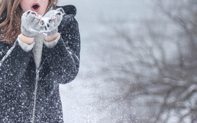 ATG Quirkies: How Cold Is That Library and Is There Anywhere To Grab a Bite Nearby?